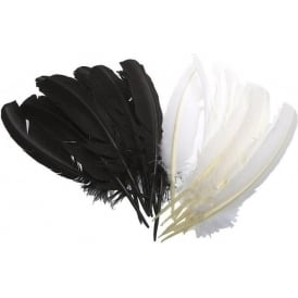 "Black Feather 10""-12"""