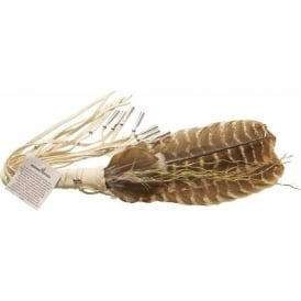 Native American Iroquois White Medicine Feather Fan With Sweetgrass 13""