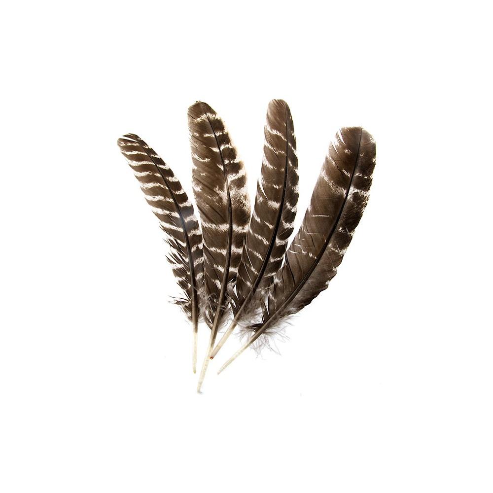Eagle Feather Dream Catcher Qero Shamans Imitation Eagle Barred Feather Sold Individually 11