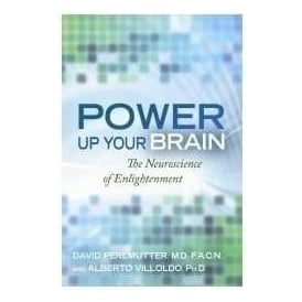 Power Up Your Brain The Neuroscience of Enlightenment by Alberto Villoldo & David Perlmutter